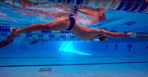 how to swim fly, how to swim butterfly, butterfly swimming, butterfly swimming technique